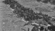 Masacre de Badajoz perpetrada por los franquistas durante la Guerra civil en España